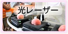 丸章青果 有限会社丸章青果 桃の糖度 甘い桃 購入