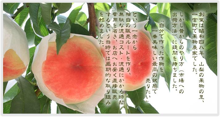 丸章青果 有限会社丸章青果 山梨 通販 桃 ぶどう 干し柿 干し芋